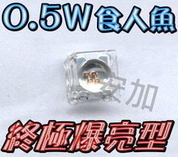 A4A41 終極爆亮0.5W 凸.平頭-食人魚LED 四晶片 many.G5.新勁戰.GTR 100顆800元