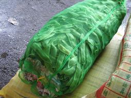 【】玉米網袋 竹筍塊網袋 蕃薯地瓜網袋 蒜頭網袋 豌豆莢甜豆網袋 防蟲網不織布收納 5尺寬資源回收網袋 菜籽網袋