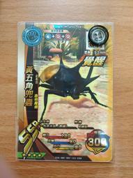 覺醒 甲蟲卡 M-WSG-08T 黃五角兜蟲 四星 SSR 新甲蟲王者