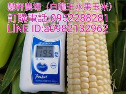 北海道牛奶水果玉米 最新鮮超平價上級品10斤500元免運費(全年種植)
