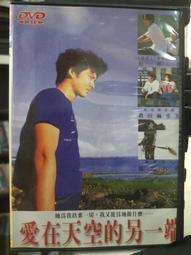 挖寶二手片-Z74-015-正版DVD-日片【愛在天空的另一端】-柏原崇 真田麻垂美(直購價)經典片