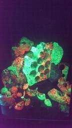 ~star~矽鋅礦原礦(Willemite)九龍夜明珠~每100公克1000元(每公克10元)~隨機出貨~