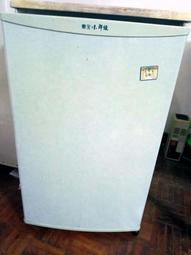 TECO 東元小鮮綠 91公升 單門小冰箱 RA1022