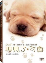 【Mary GO! DVD】感人日本電影 ~ 再見了可魯 DVD ~