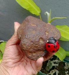 天然西藏天鐵鎳鐵隕石原礦擺件/此棵西藏天鐵100%無人為加工過,純天然色紋路超美麗,天鐵可護身,趨吉,避凶,化煞,鎮宅