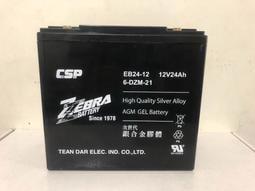 電動車電池 CSP 銀合金膠體電池 6-DZM-21 充電快速 12V 24AH 電動車 同Rec22-12  現貨供應