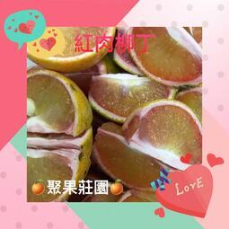 【聚果莊園】(免運) 甜甜多汁 紅肉柳丁 10台斤禮盒 20台斤箱裝 30台斤箱裝