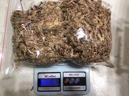 智利乾燥水苔(100克)