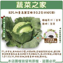 【蔬菜之家】B25.初夏高麗菜種子0.2克(約65顆)(F1,中早生,有初秋的口感,但更耐熱,定植後58天採收)