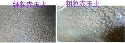 特價$54(原$60)~日本進口 分裝包 赤玉土 #細粒 #粗粒 多肉植物 栽培基質 土壤 介質 仙人掌 園藝用品