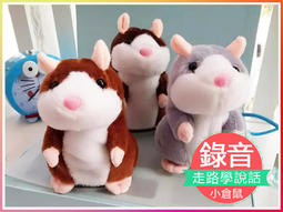 模仿老鼠 哈姆太郎 學說話老鼠 錄音倉鼠 倉鼠 電子老鼠 音樂倉鼠 音樂盒 兒童玩具 公仔【TA1G-S】