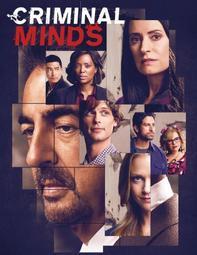 犯罪心理第十五季CriminalMindsSeason15(高清盒裝)