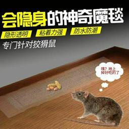透明黏鼠毯 強力黏鼠毯  黏鼠毯  捕鼠夾(買六送一)