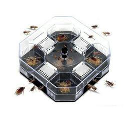 蟑螂捕捉器 蟑螂藥 螞蟻藥