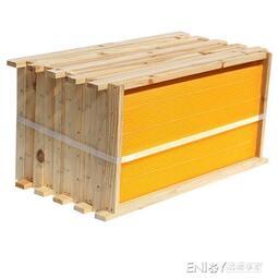 巢框帶蜜蜂巢礎巢脾中蜂意蜂蜂框蜂巢上好鐵絲帶框